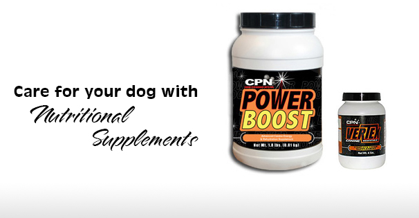 K9 Boost – Nutritional Supplements